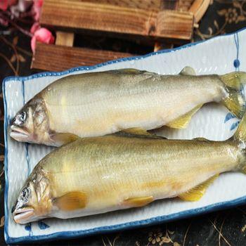 宜蘭香魚-任網