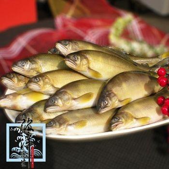 【海洋先生】台灣宜蘭香魚(公)3盒