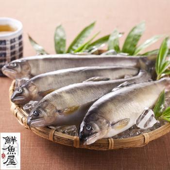 【鮮魚屋】宜蘭超大隻爆卵母香魚2kg