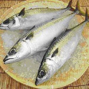 蘇澳靖魚一夜干超值組