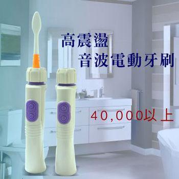 高震盪音波電動牙刷主機