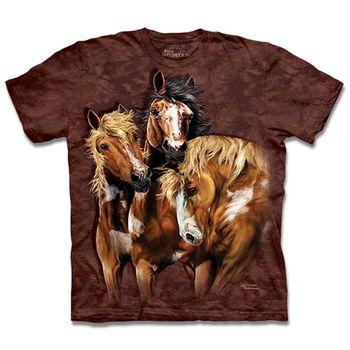 【摩達客】預購3XL-The Mountain 尋八馬群 T恤