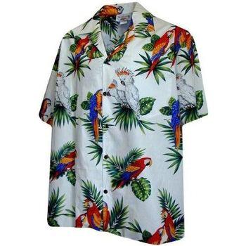 【夏威夷襯衫】2013太平洋傳奇鸚鵡白色夏威夷襯衫