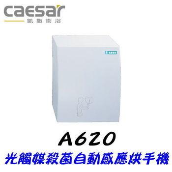 【凱撒衛浴】Caesar A620 光觸媒殺菌自動感應烘手機