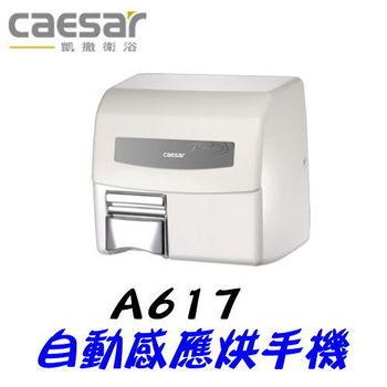 【凱撒衛浴】Caesar A617 自動感應烘手機