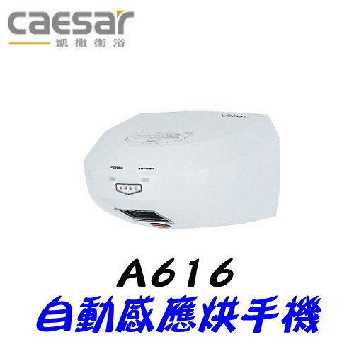 【凱撒衛浴】Caesar A616 自動感應烘手機