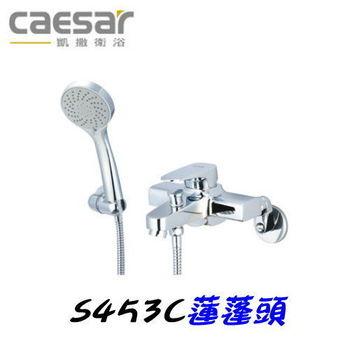 【凱撒衛浴】Caesar S453C沐浴蓮蓬頭組