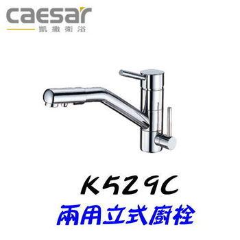 【凱撒衛浴】Caesar K529C 兩用立式廚房專用龍頭