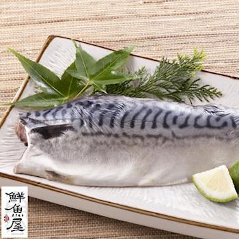 【鮮魚屋】挪威薄鹽鯖魚230g*14片破盤組