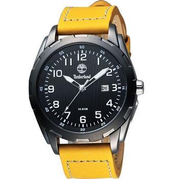 Timberland時尚腕錶-鵝TBL.13330XSU/02