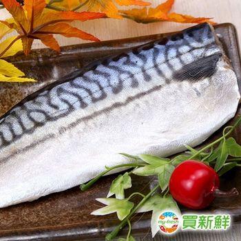 【買新鮮】挪威鯖魚一夜干10片組