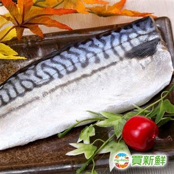 【買新鮮】挪威鯖魚一夜干40片組