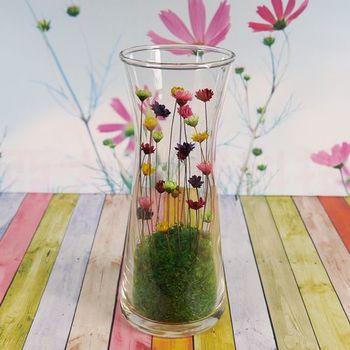 寵物花-時光沙漏Hourglass