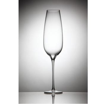 【Rona樂娜】Lynx系列-香檳杯-220ml(2入)-RNLR62025-220