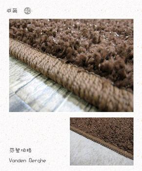 【范登伯格】威爾斯金蔥亮彩進口長毛地毯-四色-140x200cm