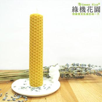 【綠機花園Green Plus】天然精油蜂蠟蠟燭《中圓捲》(30g)