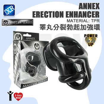 【盒裝】美國 MASTER SERIES 睪丸分裂勃起加強環 Annex Erection Enhancer