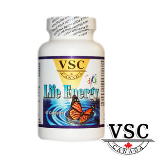 【加拿大VSC】美力活綜合營養*1瓶(60顆/瓶)