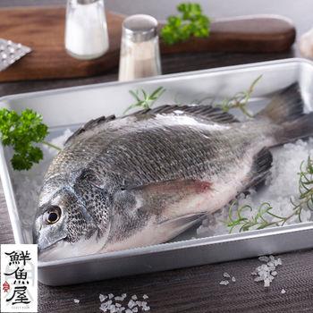 【鮮魚屋】現撈急凍黑格魚300g*5條