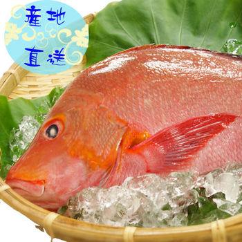 【野生魚鋪】馬紹爾野生紅雞魚350g4件組