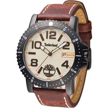 天伯嵐 Timberland Hyland 漫步休閒時尚腕錶 TBL.14479JSB/07 咖啡