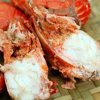 ~築地一番鮮~澳洲母旭蟹17~20隻 3kg家庭豪華聚餐