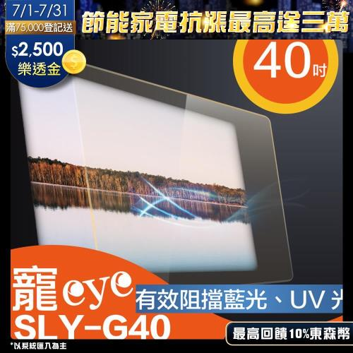 寵eye 40吋抗藍光螢幕護目鏡SLY-G40