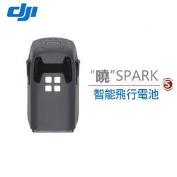 DJI 曉 SPARK 迷你航拍機配件-智能飛行電池 (先創公司貨)