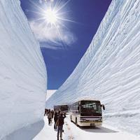 立山雪壁上高地合掌村紫藤芝櫻百選溫泉五日旅遊