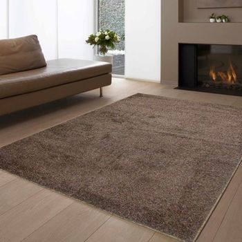 范登伯格 維爾斯閃亮金蔥長毛地毯 咖-140x200cm