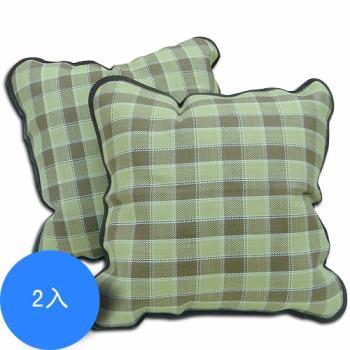 范登伯格 可樂弗格紋植草抱枕-兩入組-50x50cm