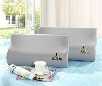 美國NINO1881 台灣製3M吸濕排汗表布記憶枕2入