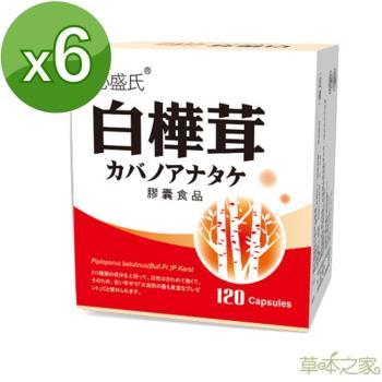 草本之家-白樺茸菇膠囊120粒X6盒