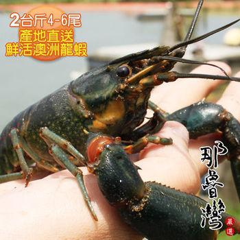 【那魯灣】烏山頭產地直送鮮活澳洲龍蝦2台斤(4-6尾/台斤)