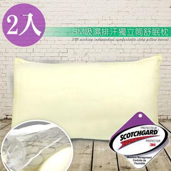 精靈工廠 3M吸濕排汗專利獨立筒舒眠枕2入(B0594*2)