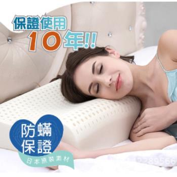 【R.Q.POLO】人體工學乳膠枕/防蹣抗菌/抗臭