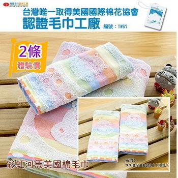 【台灣興隆毛巾製】美國棉彩虹河馬毛巾(2條組)