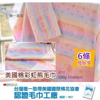 【台灣興隆毛巾製】美國棉彩虹熊毛巾(6條組)