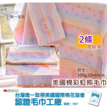 MIT商品【台灣興隆毛巾製】美國棉彩虹熊毛巾(2條組)