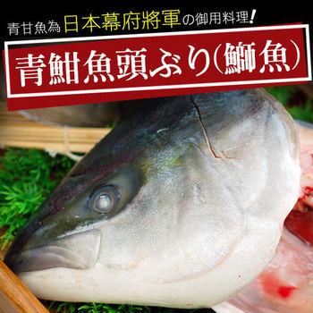 【築地一番鮮】日本極鮮青魽魚頭6片組(350g~400g/片)