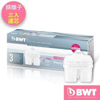 【BWT德國倍世】Mg2+鎂離子八周長效濾芯(三入組)