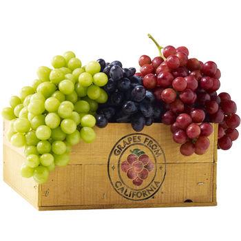 【台北濱江】三色無籽葡萄1盒(紅黑綠三種葡萄各1公斤/共3公斤裝)