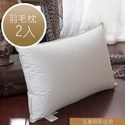 【R.Q.POLO】五星級大飯店民宿羽毛枕/枕心/枕頭-台灣製造(2入)