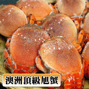 【築地一番鮮】澳洲母旭蟹13-17隻/2kg(家庭豪華聚餐組)免運組