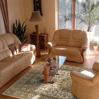 【范登伯格】渥太華高密度仿羊毛地毯-永恆(白)-170x230cm   仿羊毛毯