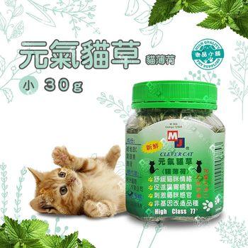 (加拿大進口) MJ-CLEVER CAT-元氣貓草 貓薄荷草 380ml-(小瓶) 維他命C 葉綠素 非基改 /2入組/