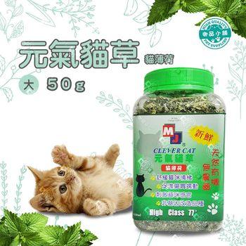 (加拿大進口) MJ-CLEVER CAT-元氣貓草 貓薄荷草 650ml(大瓶) 維他命C 葉綠素 非基改