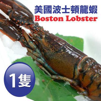【築地一番鮮】加拿大直送-頂級波士頓高壓龍蝦1隻(500g±10%/隻)免運組