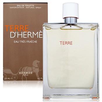 Hermes愛馬仕 大地極緻清新男性淡香水 125ml (機場限定版)