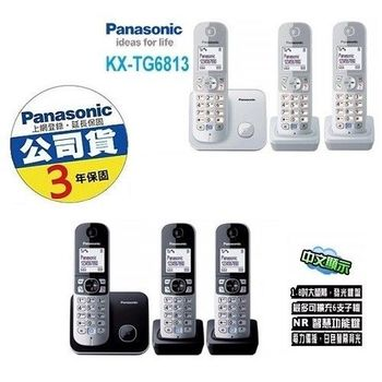 Panasonic DECT節能數位無線電話 KX-TG6813